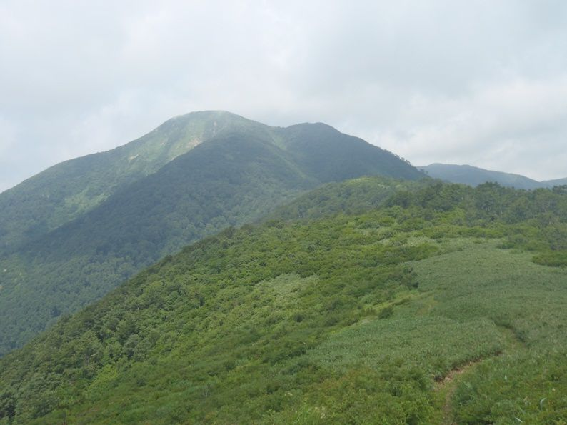 兎平から真昼岳.jpg