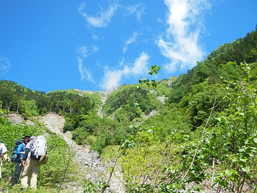 夏山1.jpg
