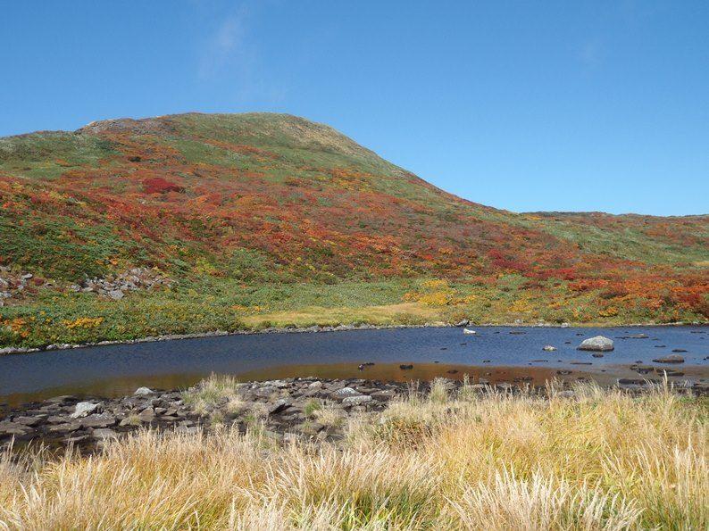 焼石岳の紅葉.jpg