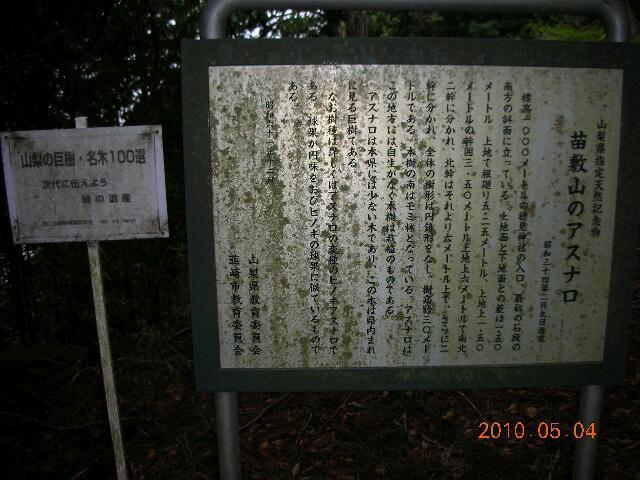 1005naesiki1.JPG