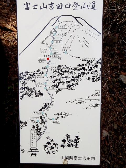 fuji-ski01.JPG