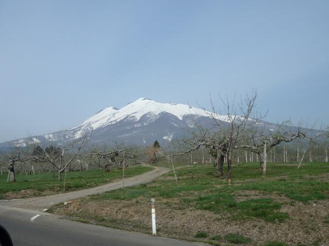120427-Iwaki8kou-02.JPG