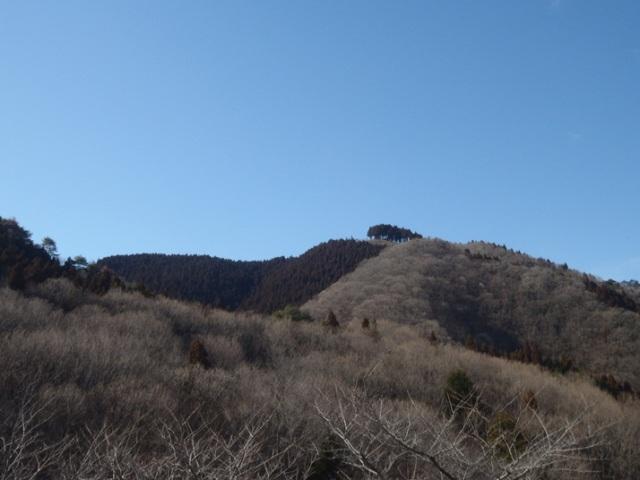 20130217-karou-05.JPG