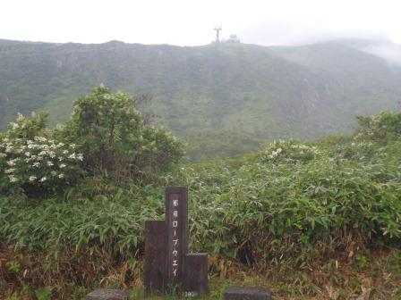 20130727-nasu-06.JPG