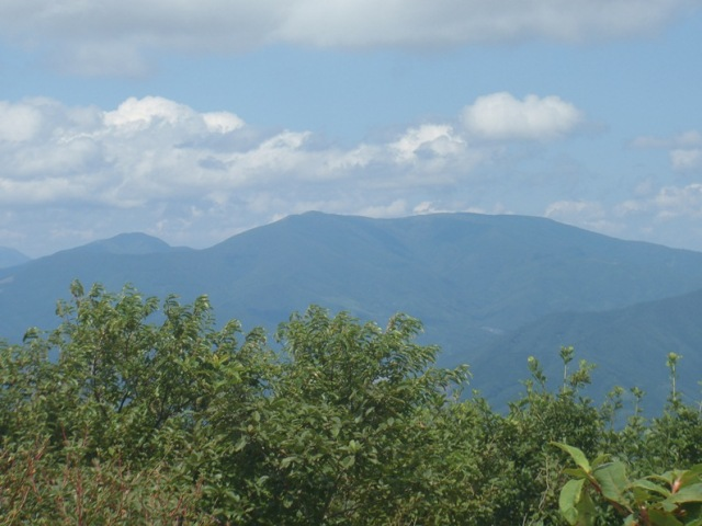 山頂から五葉山.JPG