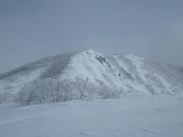 犬倉山1,408m.jpg