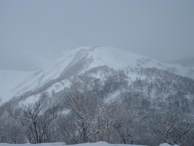 鎌倉森より犬倉山の滑った斜面.jpg