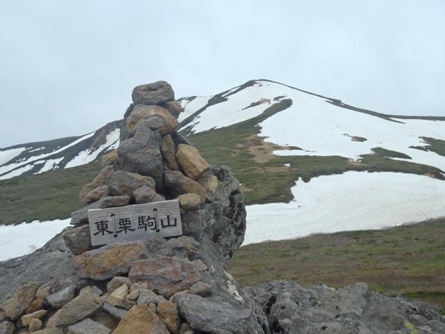 東栗駒より栗駒山.JPG