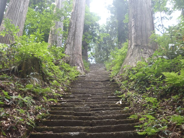 頂上直下の石段.JPG