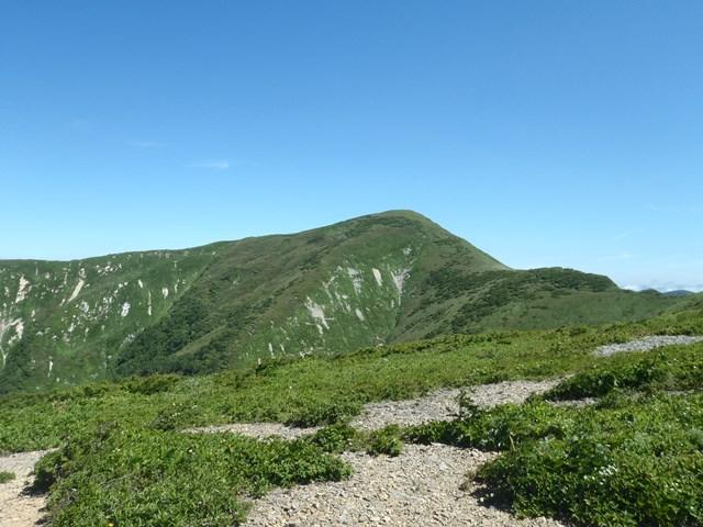コケ平から和賀岳.JPG