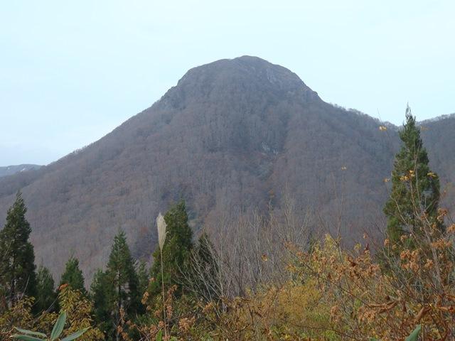 林道より柴倉山2.JPG