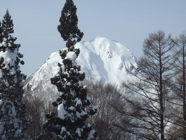 2月の柴倉山.JPG