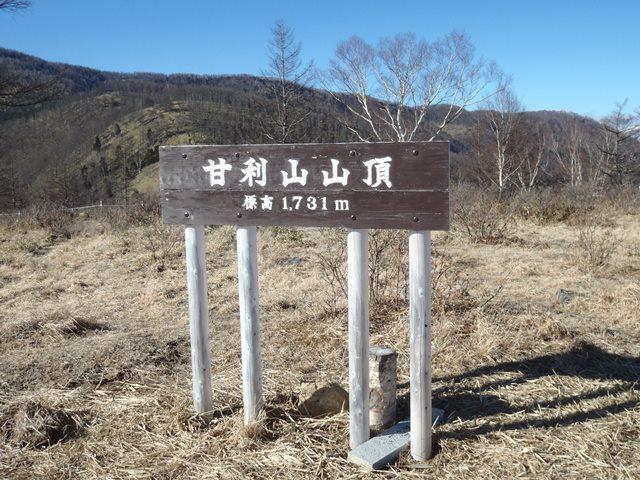 甘利山山頂.JPG