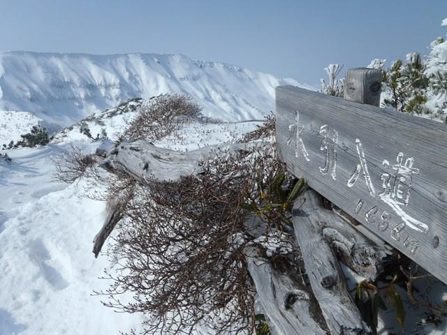 水引入道山頂.JPG