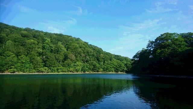 朝の桑沼.JPG