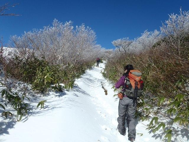 栗駒山3.JPG
