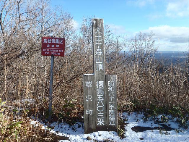 大土ヶ森山頂.JPG