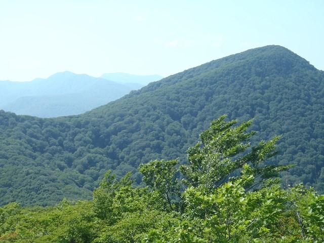 北泉ヶ岳奥は船形山.JPG