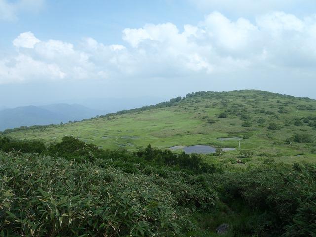 山頂より池塘帯.JPG