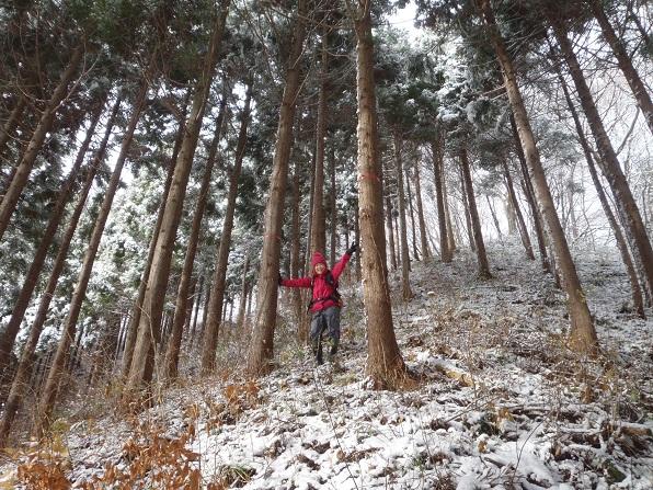 登山口.JPG