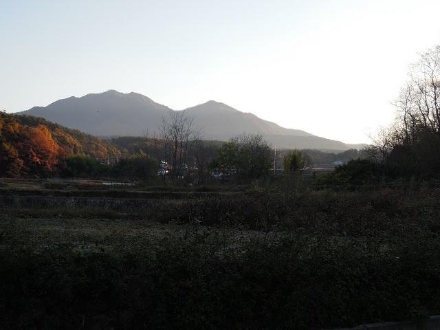 DSCN0908.jpg