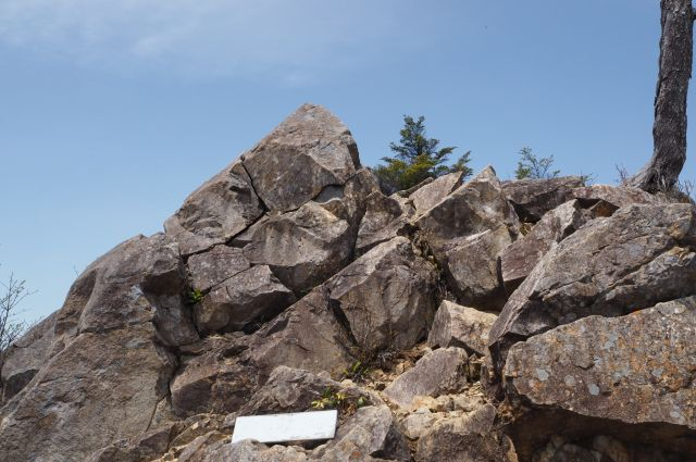 飛龍山3.jpg