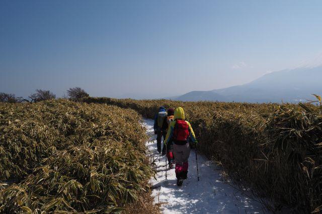 竜ヶ岳登山道2.JPG