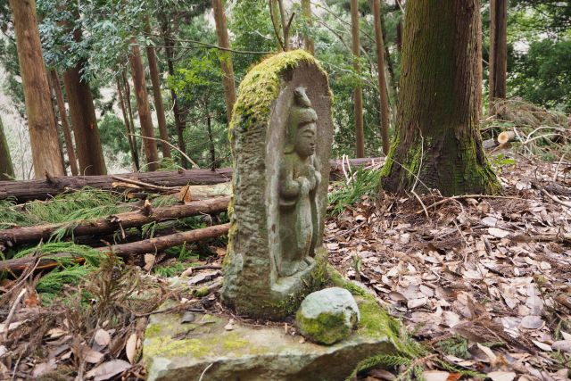 滝戸山登山道5.JPG