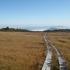 木道の向こうは飯豊・左に月山.JPG