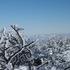 山頂より神室山.JPG