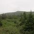 雨の乳頭山.JPG