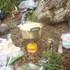 獅子鍋すき焼き.JPG