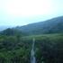 田苗代湿原.JPG
