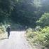 林道歩き (640x360).jpg
