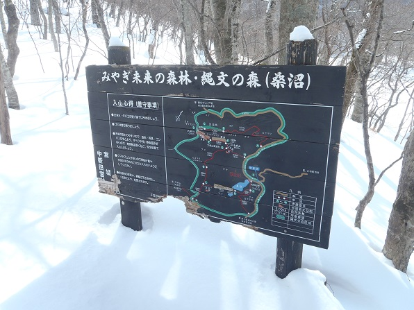 桑沼2.JPG