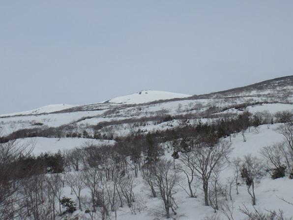 本日は山頂が見えます.JPG