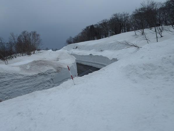 栗駒も除雪が始まっています.JPG
