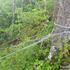 ロープ2本.jpg