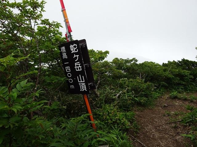 蛇ヶ岳.JPG