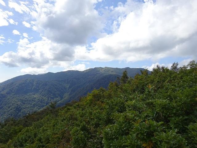 ここの山塊で一番高い向白神山.JPG