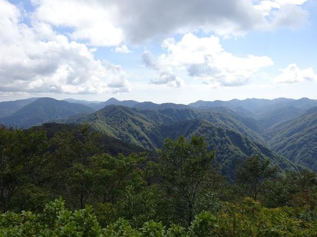 世界遺産白神山地.JPG