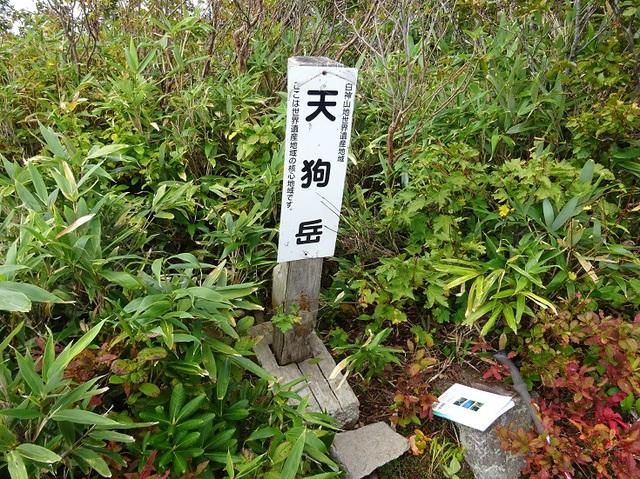 天狗岳山頂.JPG
