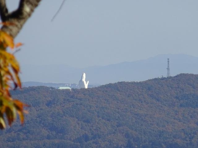 ゴロ山から仙台観音.JPG