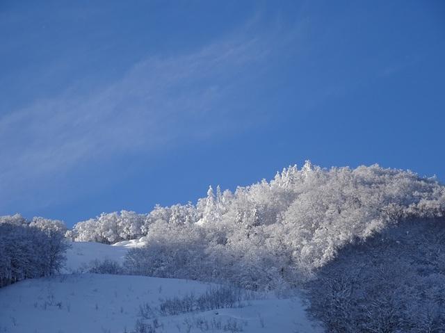 スキー場トップ.JPG