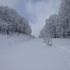 更に新雪.JPG