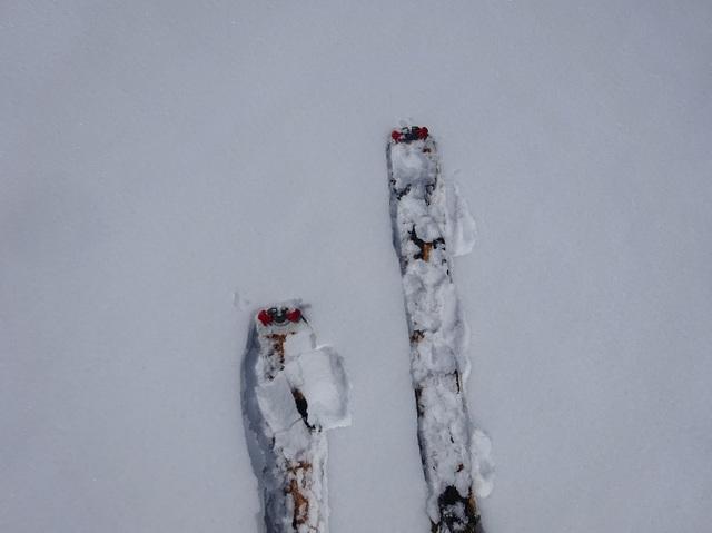 雪重く.JPG