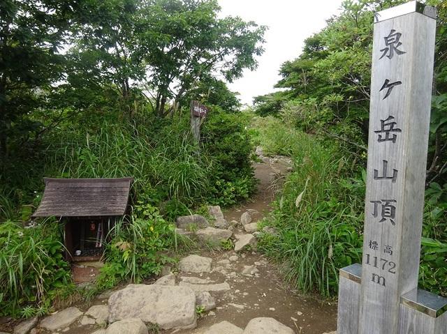 泉ヶ岳山頂.JPG