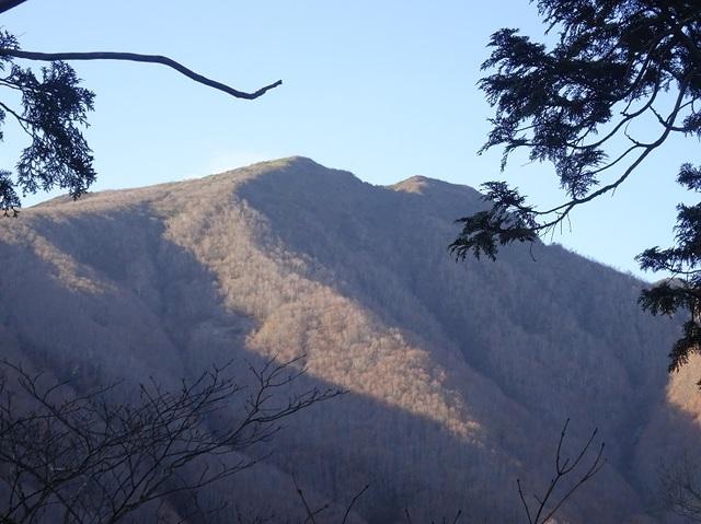 登山道から南雁戸山.JPG