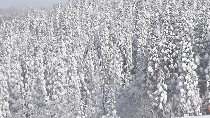 スキー場、トップの画像1.JPG
