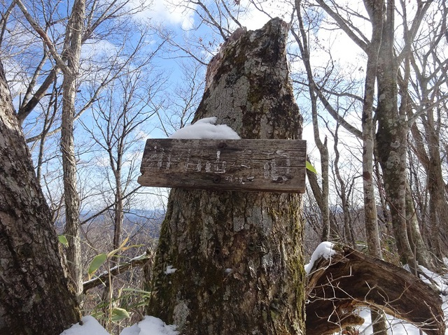 桐の目山山頂.JPG